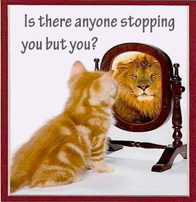 cat-lion-stopping-you {focus_keyword} 5 cara Untuk Melawan Rasa Negative Dalam Diri Kita cat lion stopping you